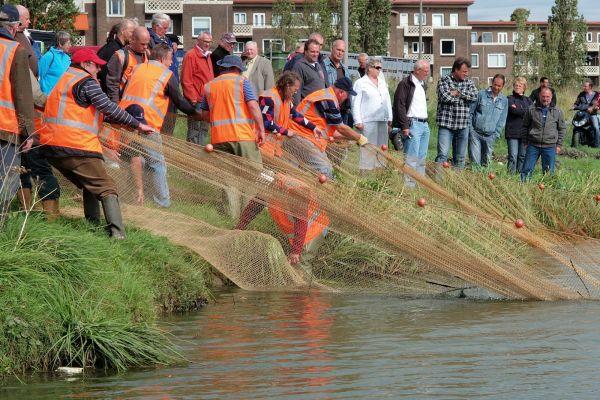 P9126422-F verplaatsen vissen Geusseltvijver - Reen van Beek.JPG