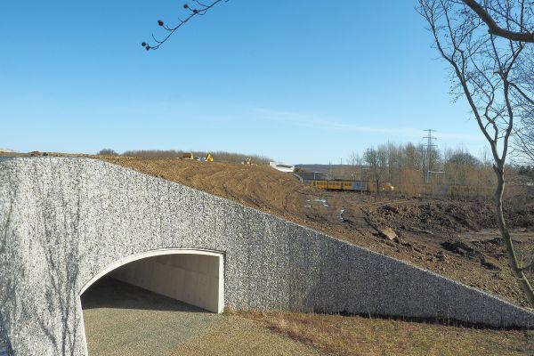 Tunneltje Beukenlaan - Reen van Beek (5).jpg
