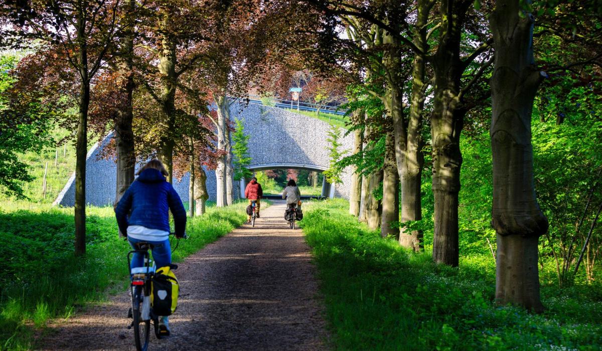 De Groene Loper vormt een mooie omgeving om te recreëren. © Fred Berghmans