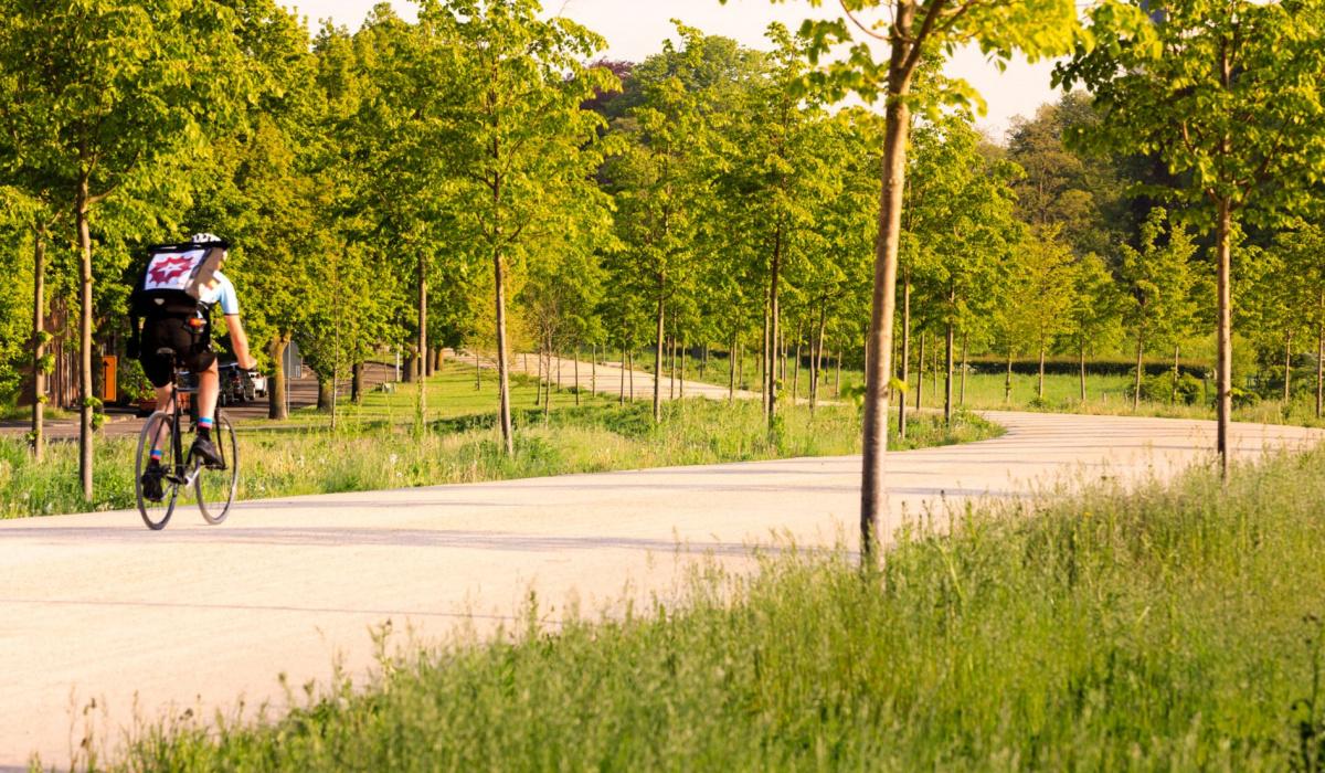 Ook fietskoeriers maken gebruik van de Groene Loper. © Fred Berghmans