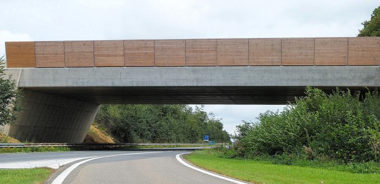 Ecoducten - Reen van Beek (3).JPG