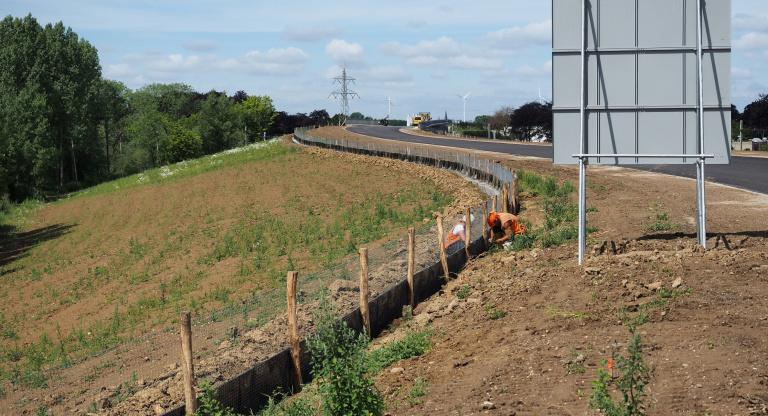 rasters langs Nieuwe Limmelderweg 2.jpg