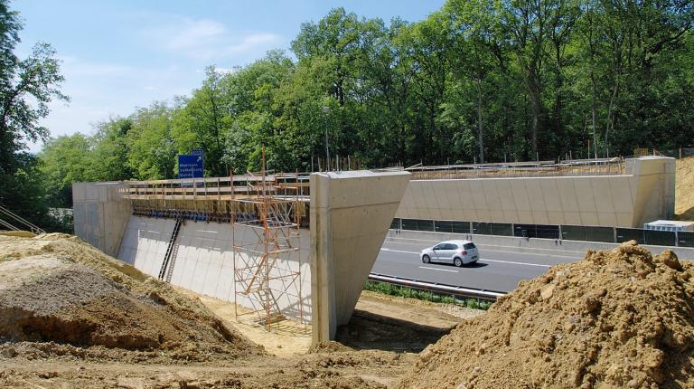 Ecoducten - Reen van Beek (2).jpg